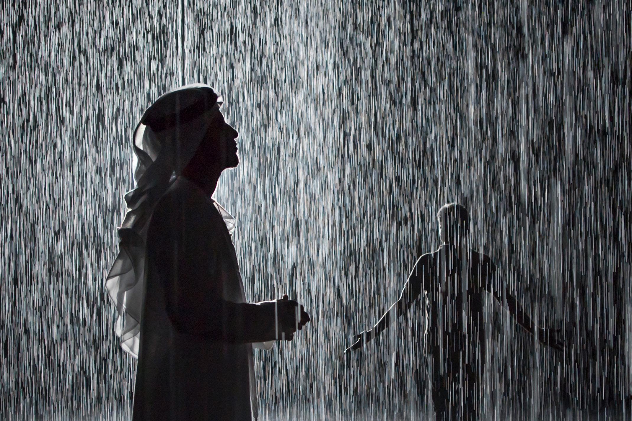 IDEO_Luca Ponticelli_rain room